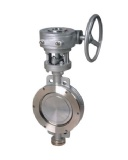 Wafer Double Offset Butterfly Valves